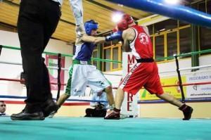 boxe cavarzere Fonso