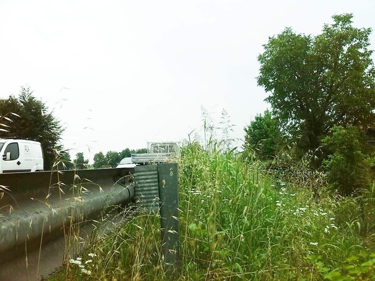 Vigodarzere, l'erba alta rende pericoloso il Terraglione