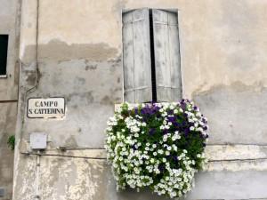 2.IMPAGINE_CAMPO-S-CATTERINA