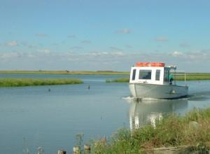 20101101125922navi nel delta