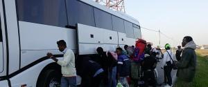 bagnoli profughi arrivo3