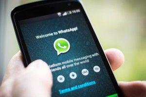 whatsapp cavarzere