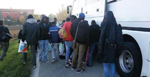 profughi sprar