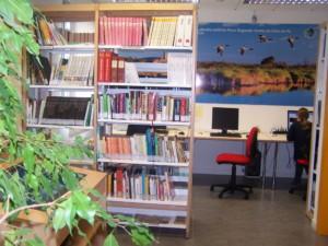 biblioteca-porto-tolle