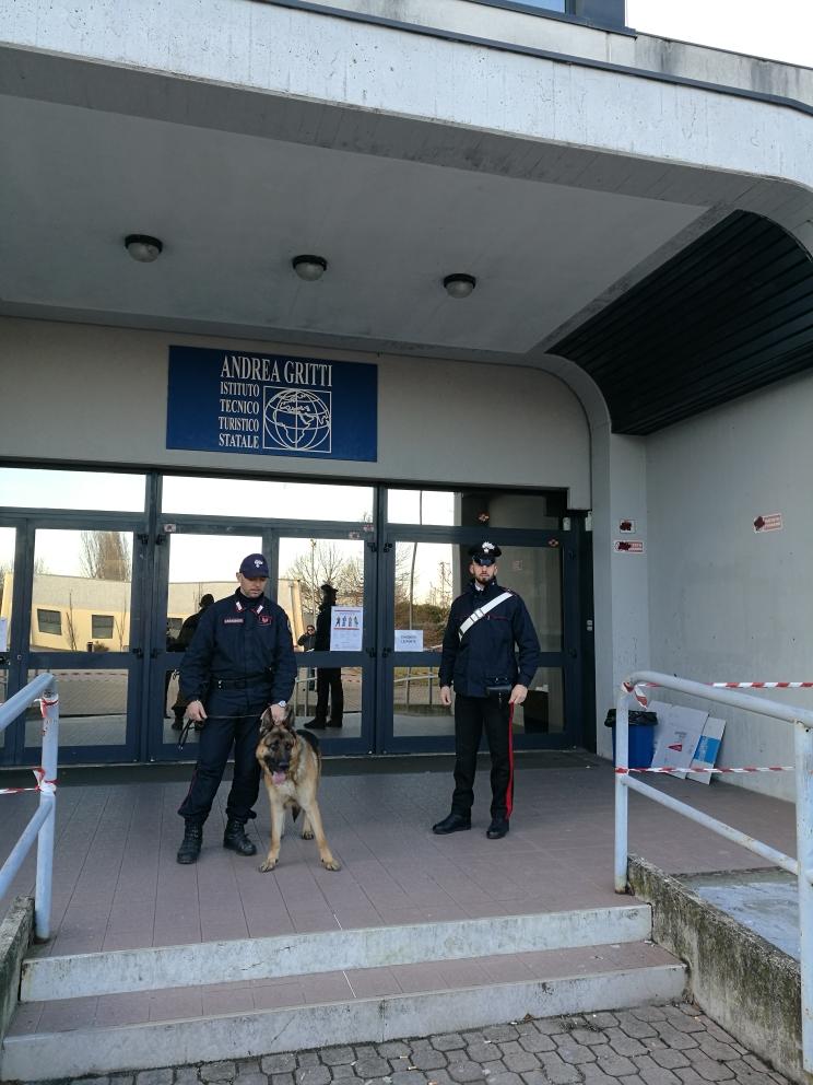 carabinieri e cani antidroga in una scuola