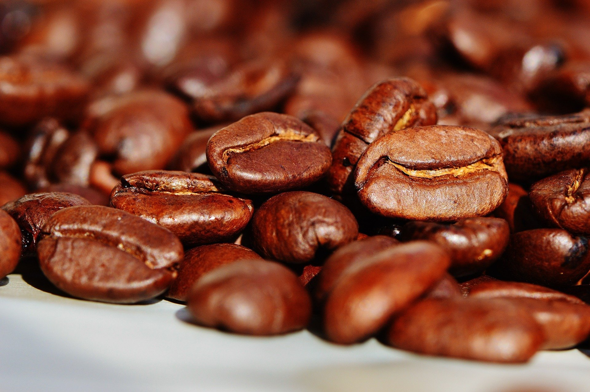 I caffè premiati al Great Taste