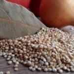 Quinoa alle spezie