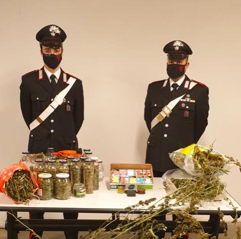 carabinieri di Recoaro Terme con la marijuana e la cannabis sequestrata