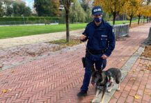 unita cinofila Polizia Locale Vicenza