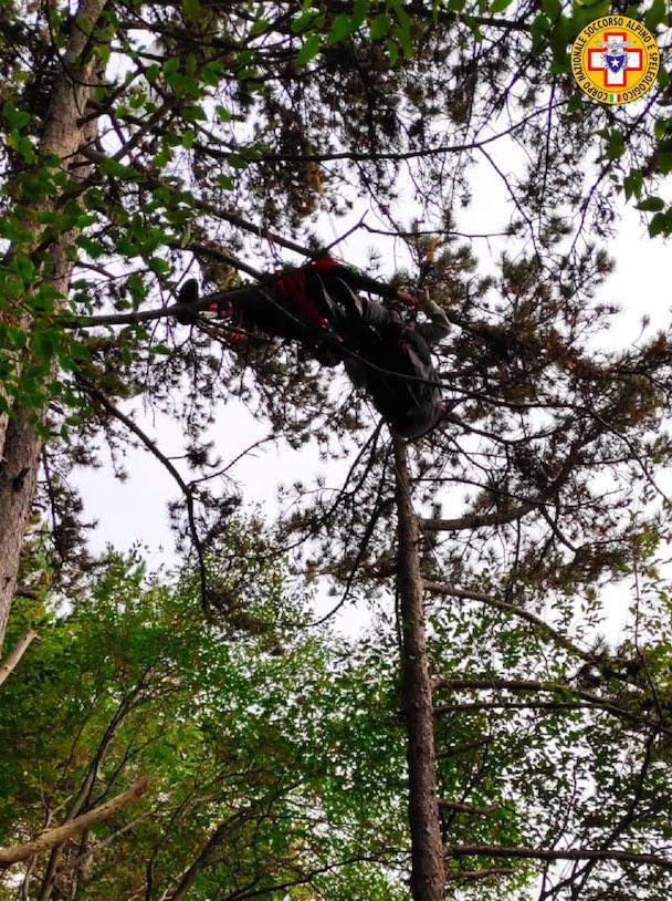 pilota appesa agli alberi